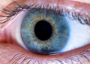 EyeDream Orthokeratology Featured